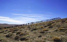 Yaz Yürüyüş Liderliği Kursu - İzmir Katılımcı Listesi