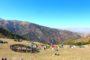 Panda Doğa Sporları ve Spor Tırmanış Kulübü Boulder Cup Etkinliği gerçekleştirildi.