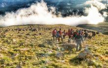 DÖDOSK Gidengelmez Dağları Yürüyüş Etkinliği Daveti