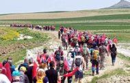 Sakarya Savaşı Diriliş Yolu Yürüyüşü-Ankara, Polatlı