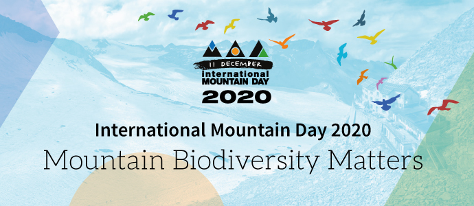 11 Aralık Uluslararası Dağ Günü 2020 Teması; Dağların Biyoçeşitliliği